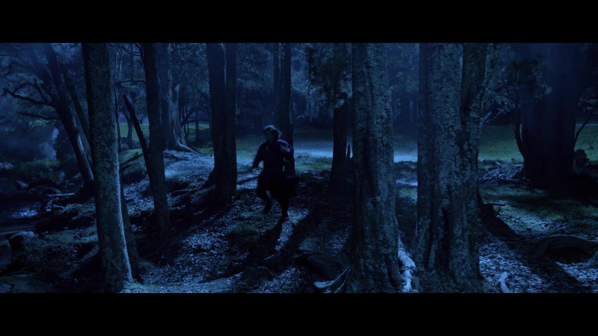 El Tigre Y El Dragon La Espada Del Destino 1080p Lat-Cast-Ing 5.1 (2016)