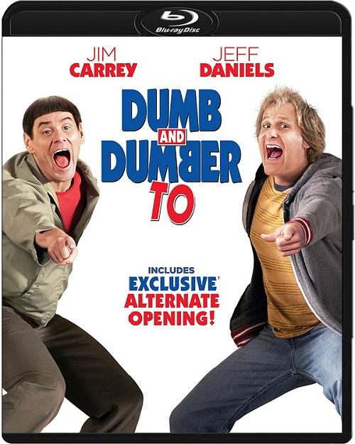 Głupi i głupszy bardziej / Dumb and Dumber To (2014) MULTi.1080p.BluRay.x264.DTS.AC3-DENDA / LEKTOR i NAPISY PL
