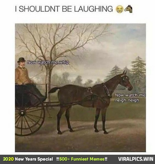 500+ Funniest Memes, LOL Can't Stop Laughing (2020 New Year's Special) 176