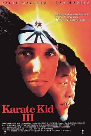 descargar El Karate Kid 3 [1989][BD-Rip][720p][Lat-Cas-Ing][Art.Marciales] gratis