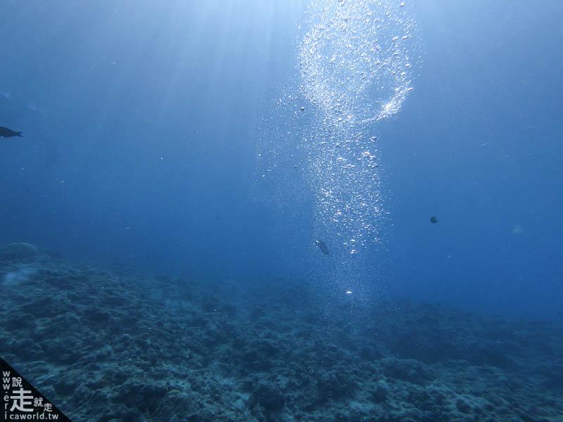 沖繩 青之洞窟 潛水 岸潛