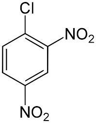 Dinitroclorobenzene 1