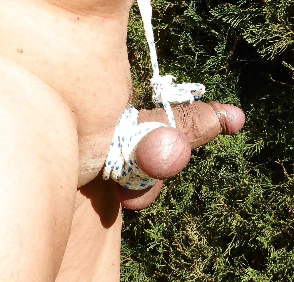 Cbt bondage porn-4561
