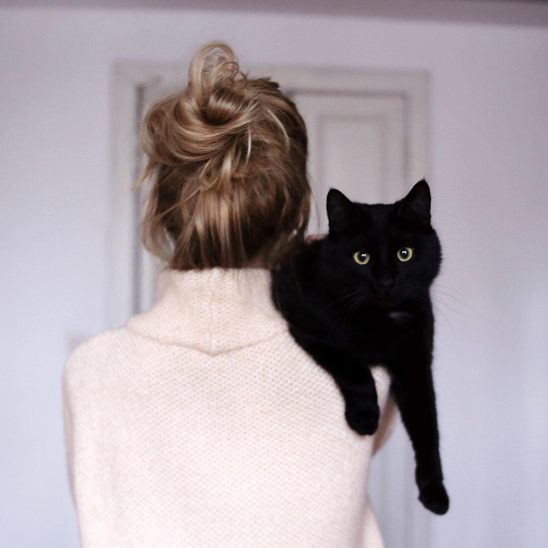 В гостях у кошек и их хозяки, художницы Марики / фото 12