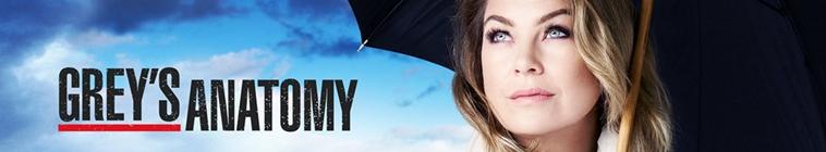 Greys Anatomy S16E07 XviD-AFG