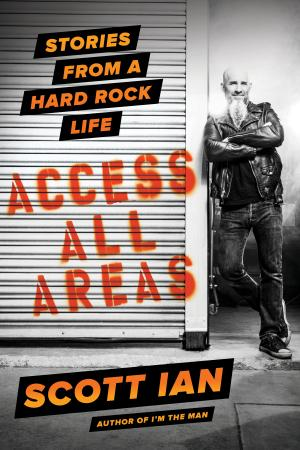 Access All Areas  Stories from a Hard Rock Life