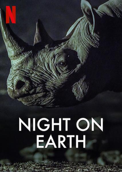 الليل على الأرض Night On Earth[مترجم] [1080p] تحميل تورنت 2 arabp2p.com