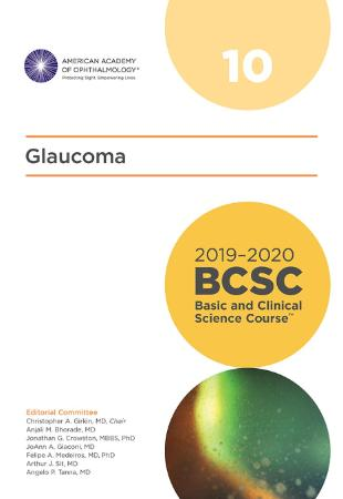 2020 BCSC (Basic and Clinical Science Course), Section 10