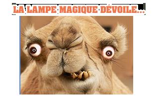 LA LAMPE MAGIQUE - Page 42 PyuXsqBT_o
