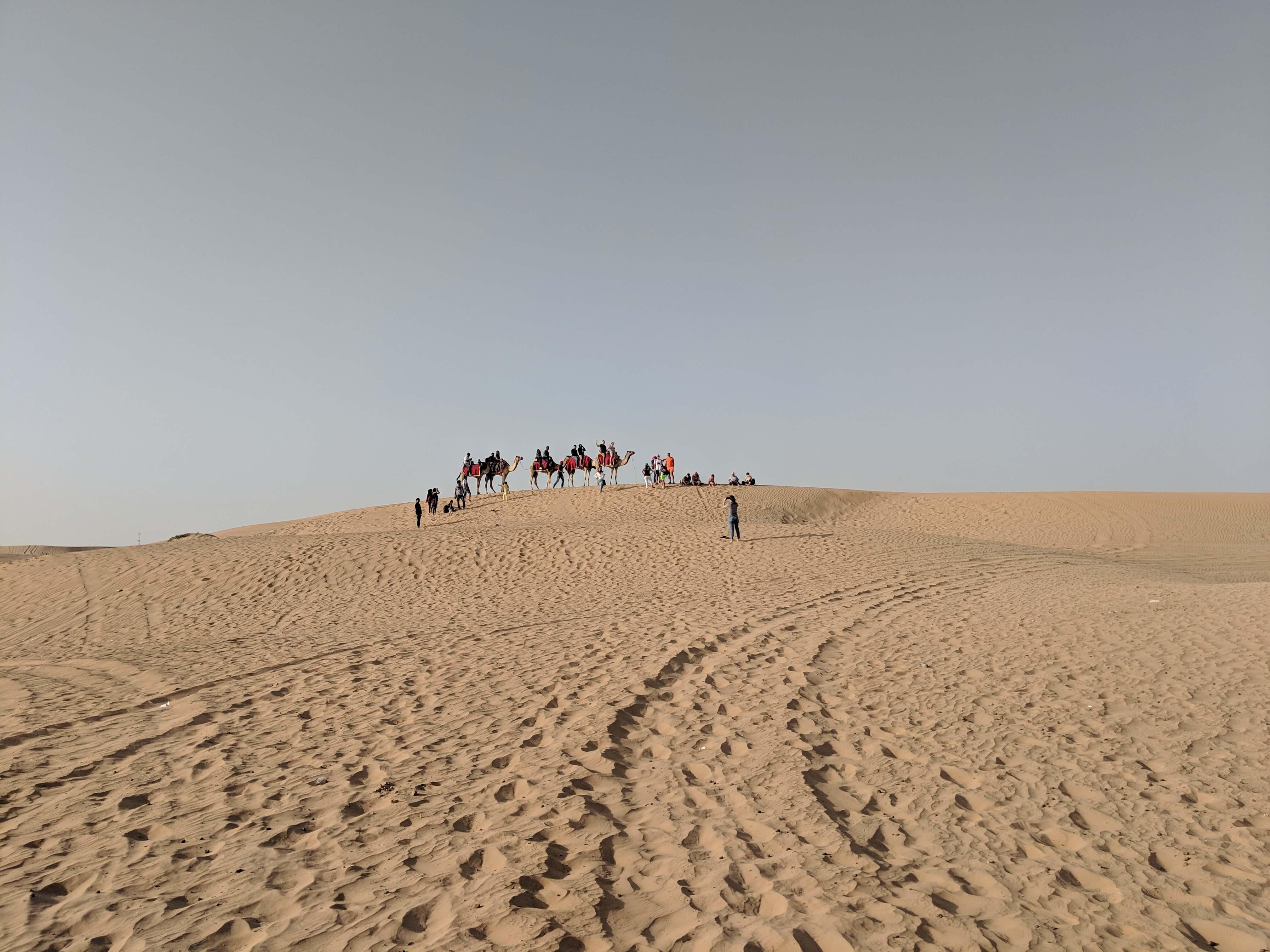 Camel Ride in Dubai, UAE