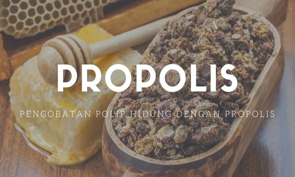 Pengobatan Polip Hidung Dengan Propolis