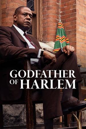 Godfather of Harlem S01E07 1080p WEB H264-METCON