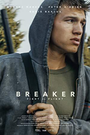 Breaker 2019 1080p AMZN WEBRip DDP5 1 x264-IKA
