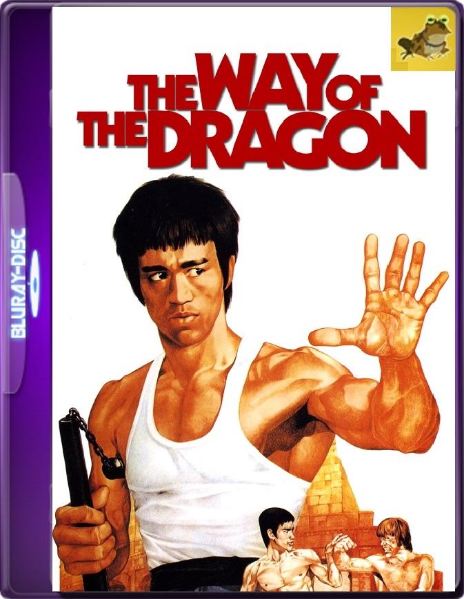 El Camino Del Dragón (1972) Brrip 1080p (60 FPS) Latino / Inglés