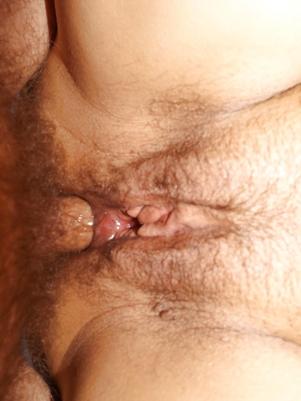 Xnxx boobs anal-3199