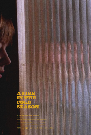 A Fire In The Cold Season poster image