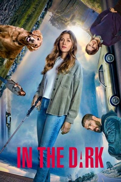 In the Dark 2019 S03E05 720p HEVC x265-MeGusta