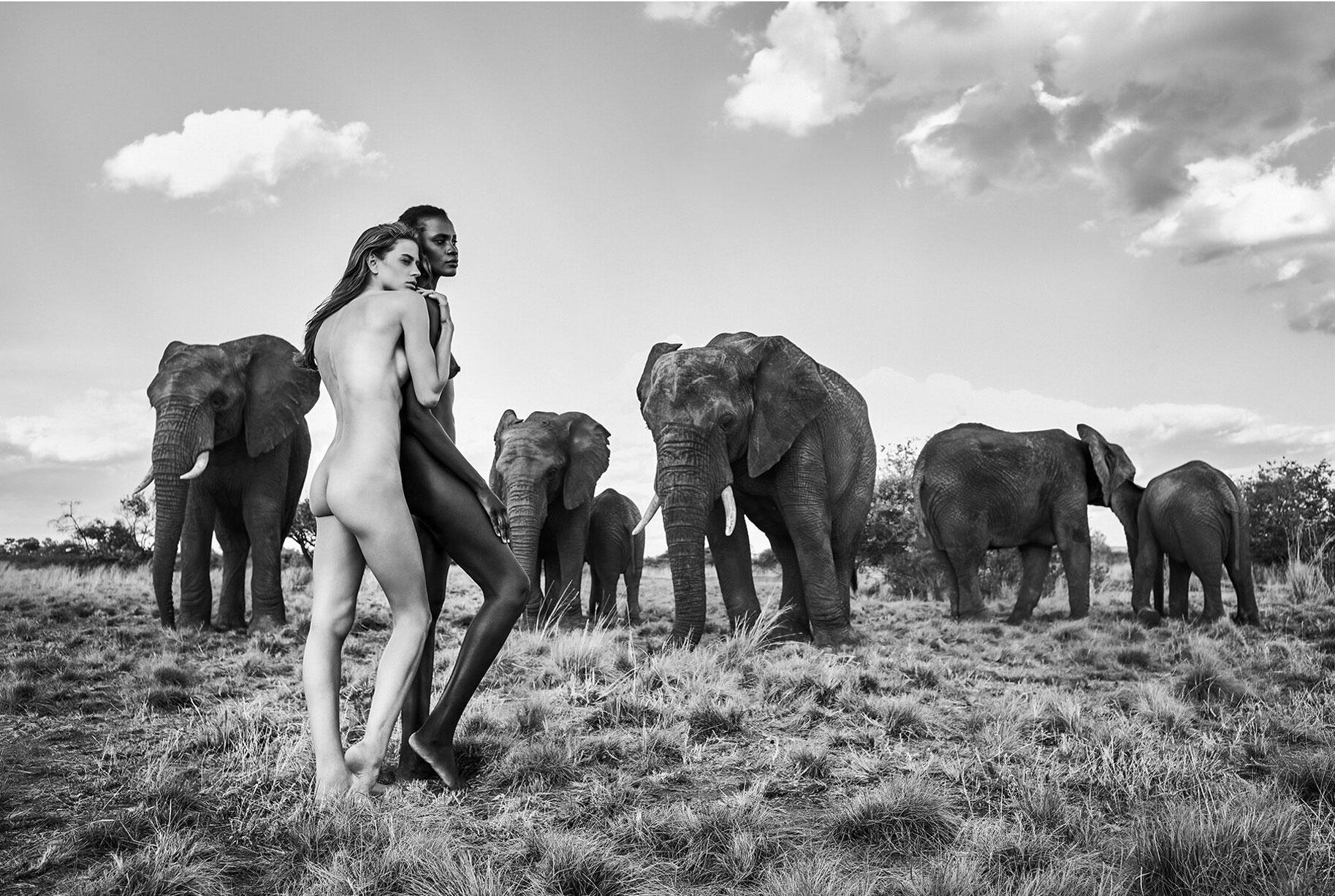 эротический календарь 12 чудес природы / Африка 2019 / фото 12