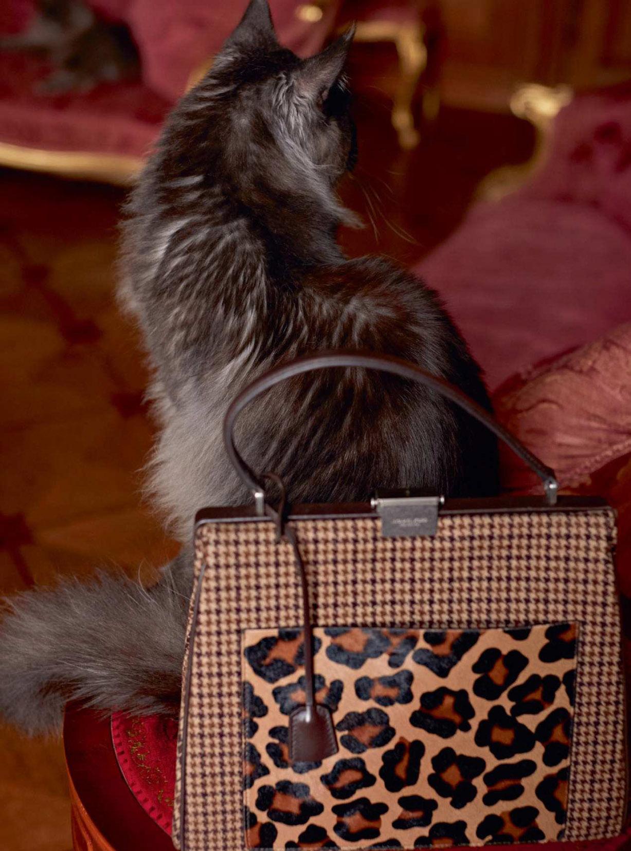 Девушка с кошками / CatWoman - Florence Kosky by Agata Pospieszynska - Harpers Bazaar UK september 2018