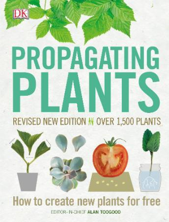 Propagating Plants   How to Create New Plants for Free