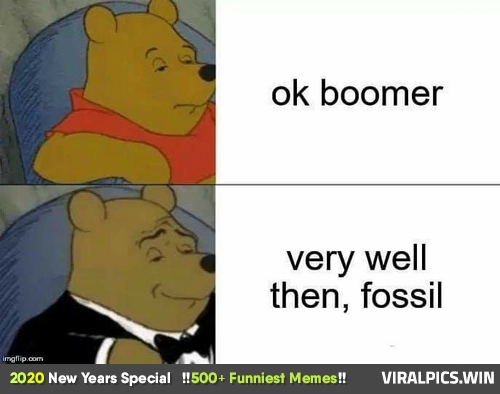 500+ Funniest Memes, LOL Can't Stop Laughing (2020 New Year's Special) 443