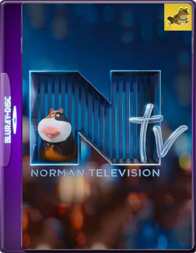 NTV: Televisión Norman (2016) Brrip 1080p (60 FPS) Latino