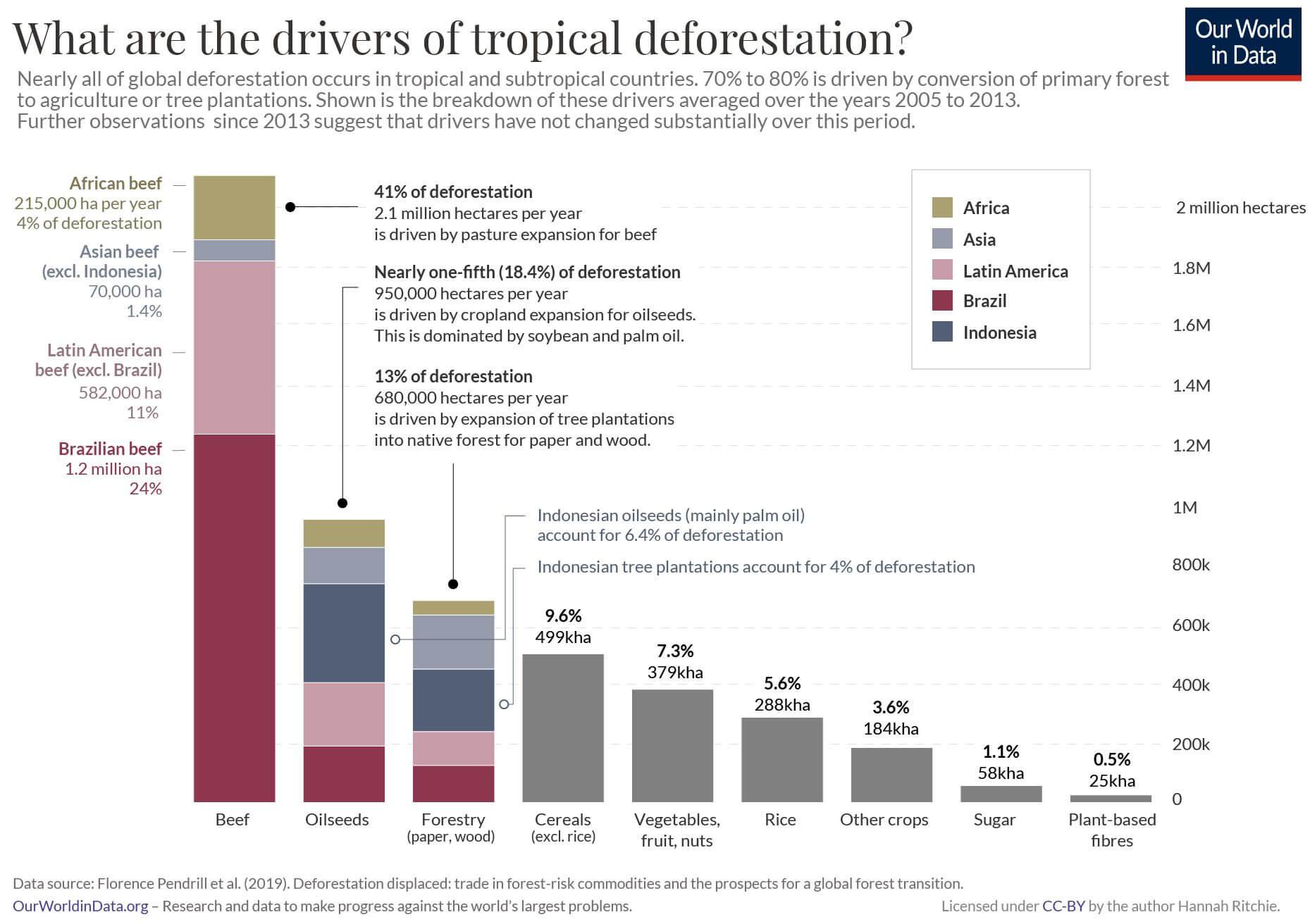 Causes déforestation
