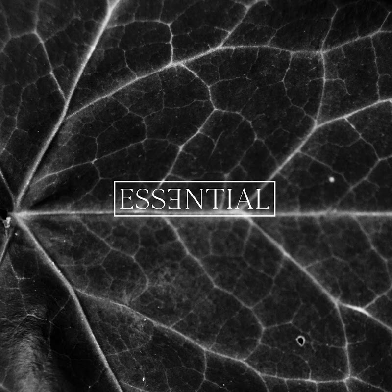 Poster for ESSENTIAL 014