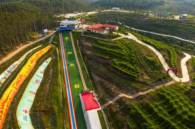 Impoverished village turns into valley of flowers