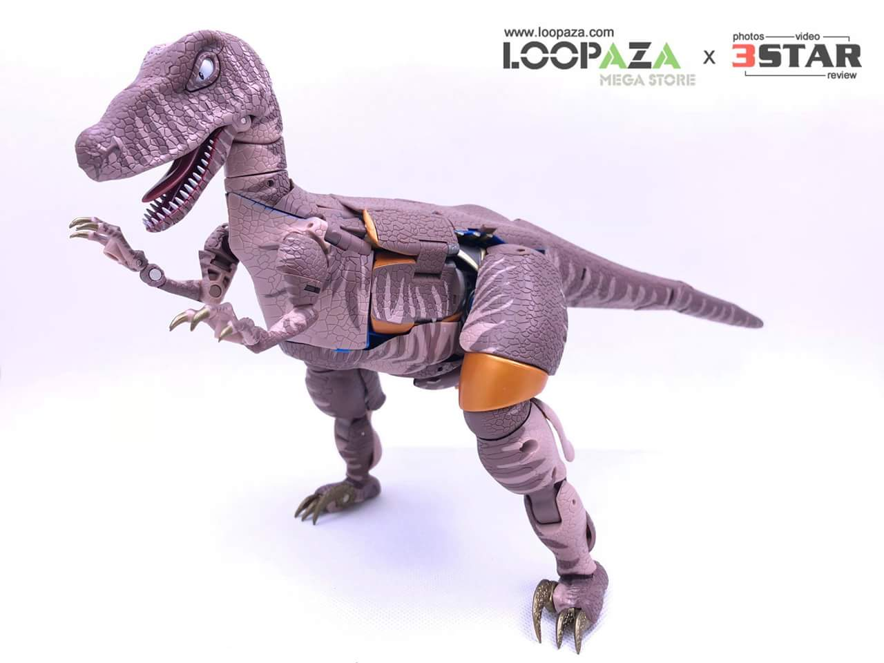 [Masterpiece] MP-41 Dinobot (Beast Wars) - Page 2 JY67MH3G_o