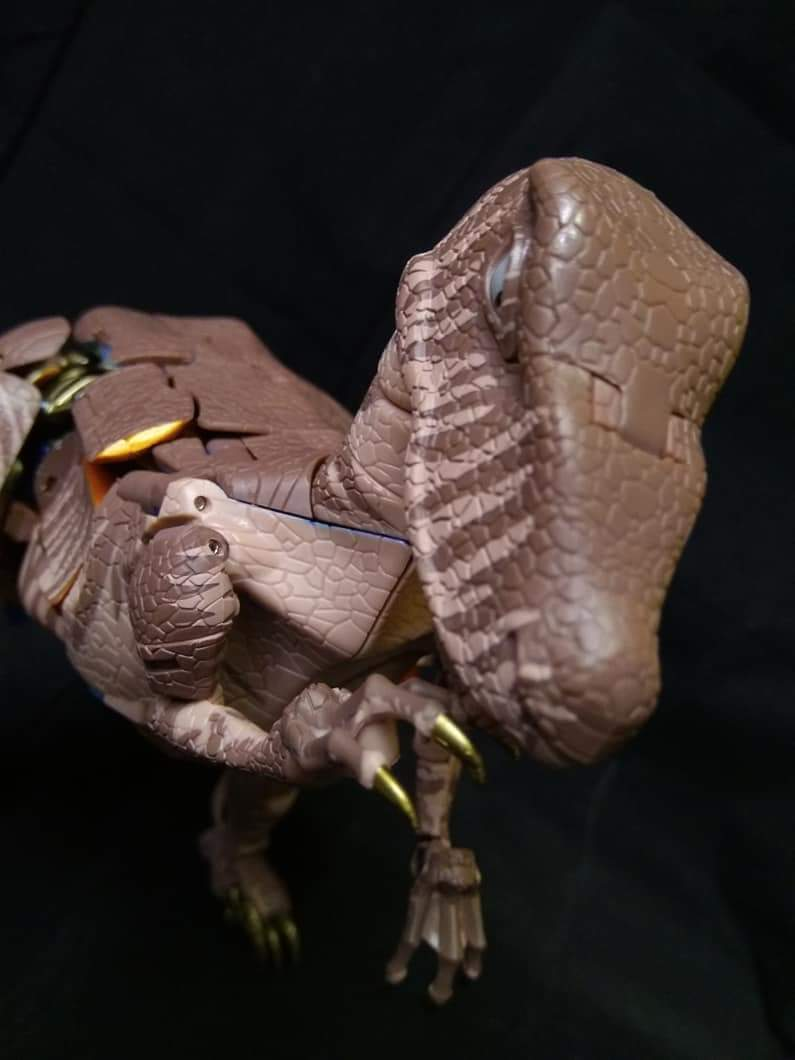[Masterpiece] MP-41 Dinobot (Beast Wars) - Page 2 0tgTCEK9_o