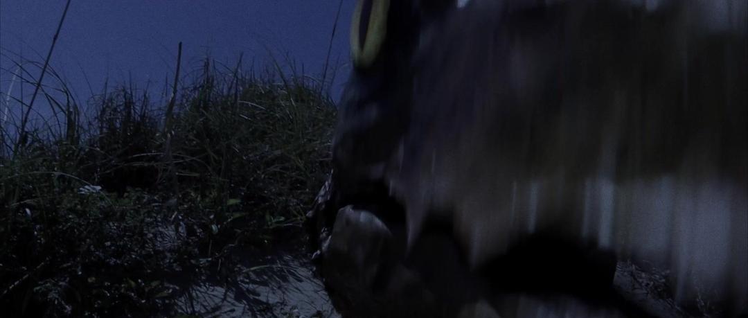 Cowgirls vs Pterodactyls 2021 1080p AMZN WEBRip DDP2 0 x264-DREAMCATCHER