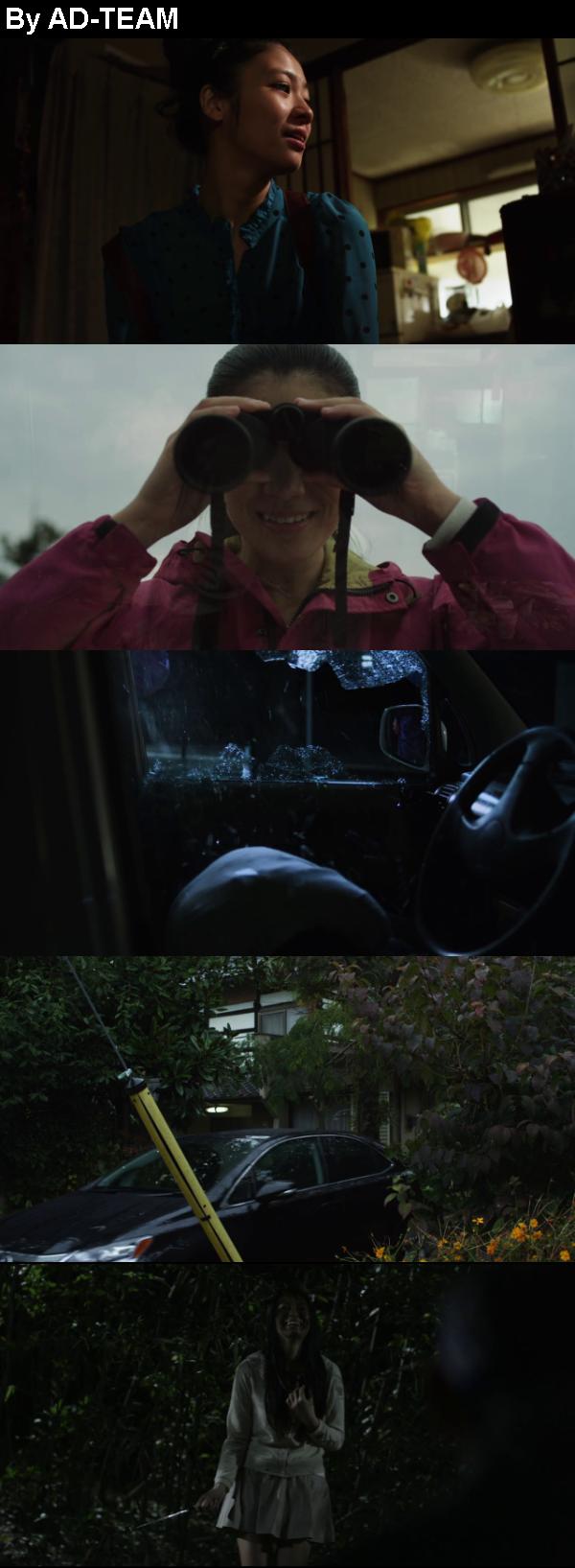 Greatful Dead (2013) BluRay 720p YIFY
