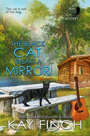 The Black Cat Breaks a Mirror By Kay Finch