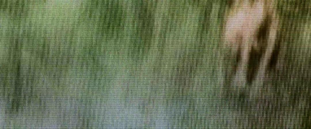 Buck Run 2021 1080p WEB-DL DD5 1 H264-CMRG