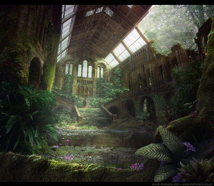 Décimo Reto: Desafío a Calathea [Reto Planta – Visita al Bosque de los Tréboles] 4PfXZGxU_o