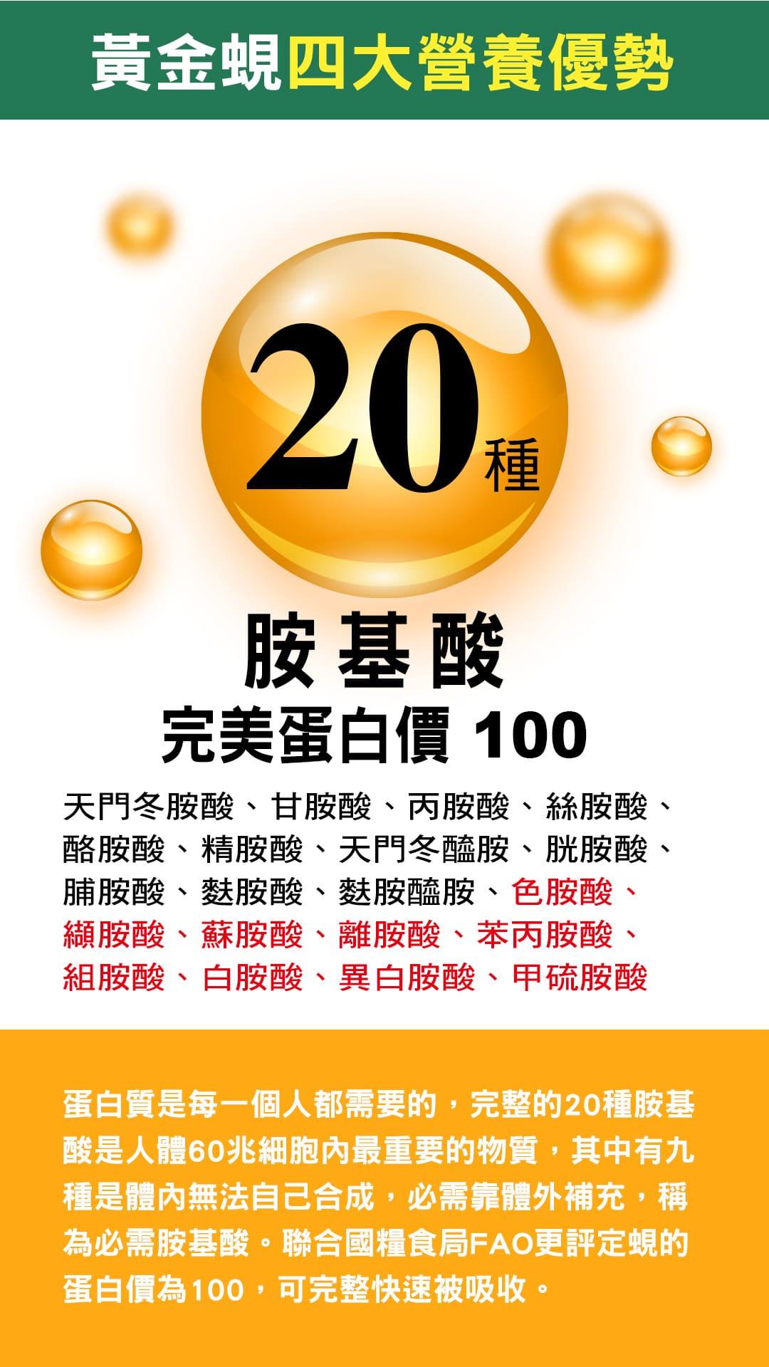 9.黃金蜆四大營養優勢、20種胺基酸