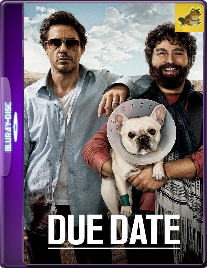 Todo Un Parto (2010) Brrip 1080p (60 FPS) Latino / Inglés