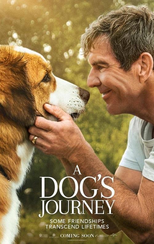 Był sobie pies 2 / A Dog's Journey (2019) MULTi.720p.BluRay.x264.AC3-DENDA / DUBBING i NAPISY PL