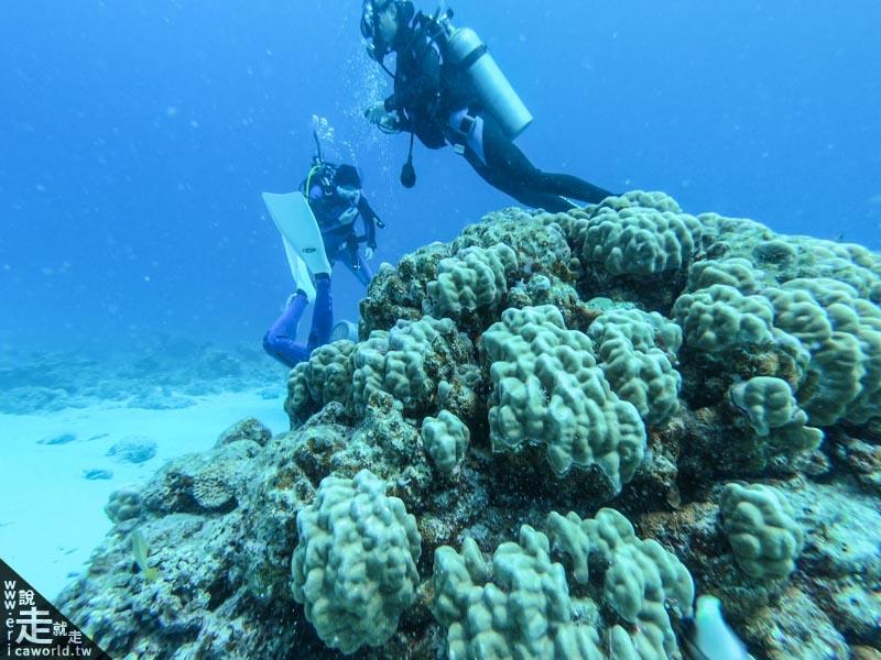 沖繩 慶良間諸島 潛水 船潛