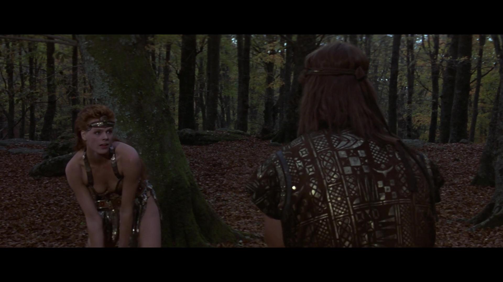 El Guerrero Rojo 1080p Lat-Cast-Ing[Fantastico](1985)