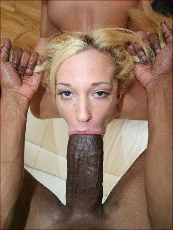 Girlfriend blowjob pictures-7907