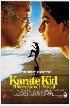 descargar El Karate Kid 1 [1984][BD-Rip][720p][Lat-Cas-Ing][Art.Marciales] gratis