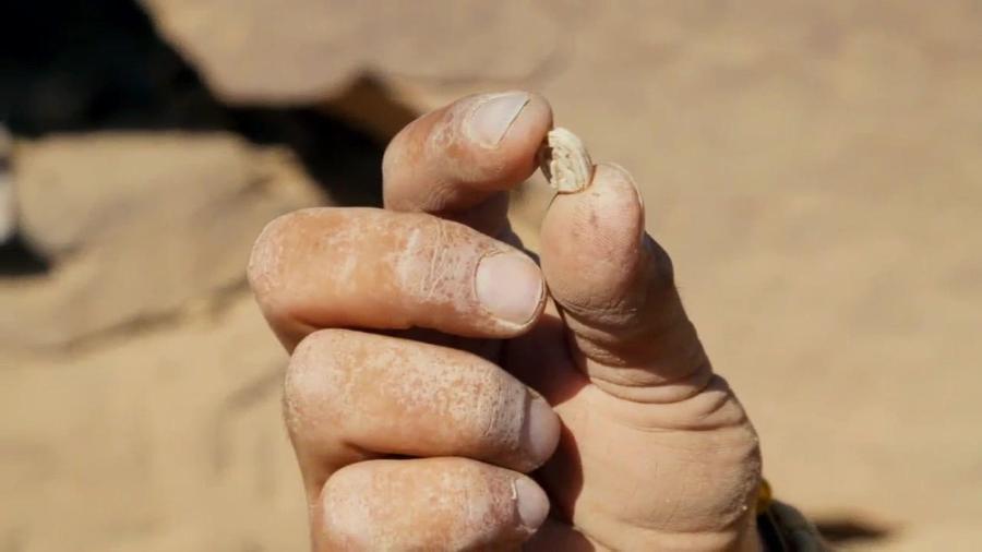 Lost Treasures of Egypt S02E01 Secrets of Tutankhamun 720p WEBRip x264-CAFFEiNE