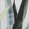 ciel abstrait — coco M0xEGEYF_o