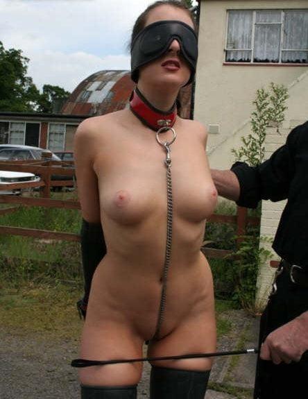 Pregnant bondage xxx-8800