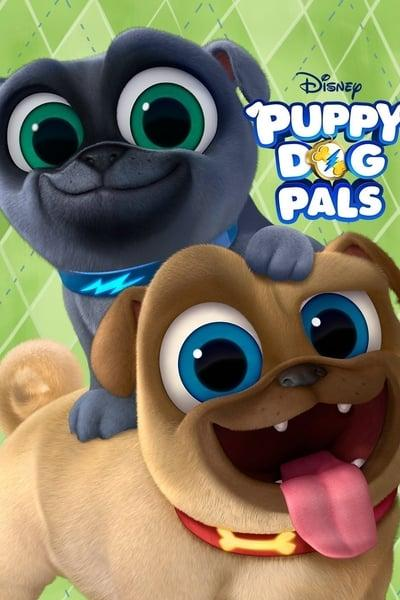 Puppy Dog Pals S04E03 720p HEVC x265