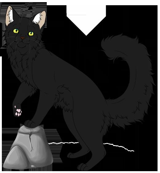 Shadowclan Kittenhub! Qva9xzYL_o