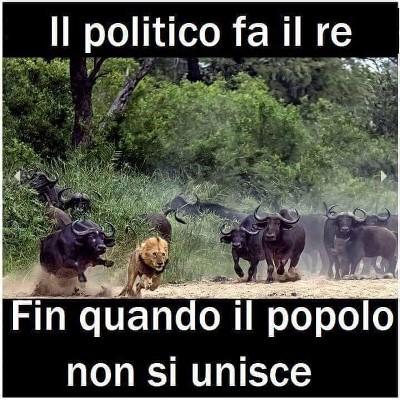 Il governo giallorosa di Giuseppi, Gigino e compagnia cantante - Pagina 5 5FPR8wkf_o