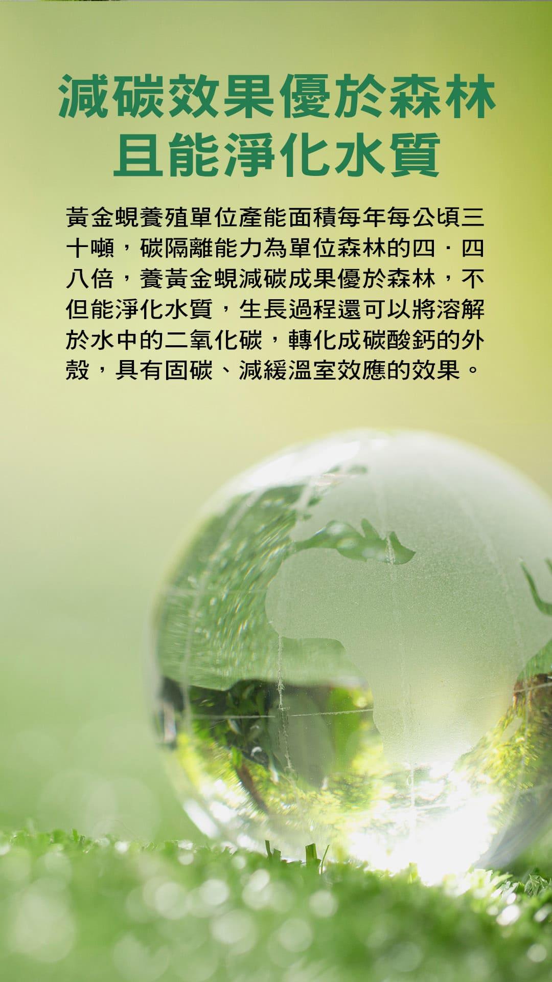 37.減碳效果優於森林且能淨化水質